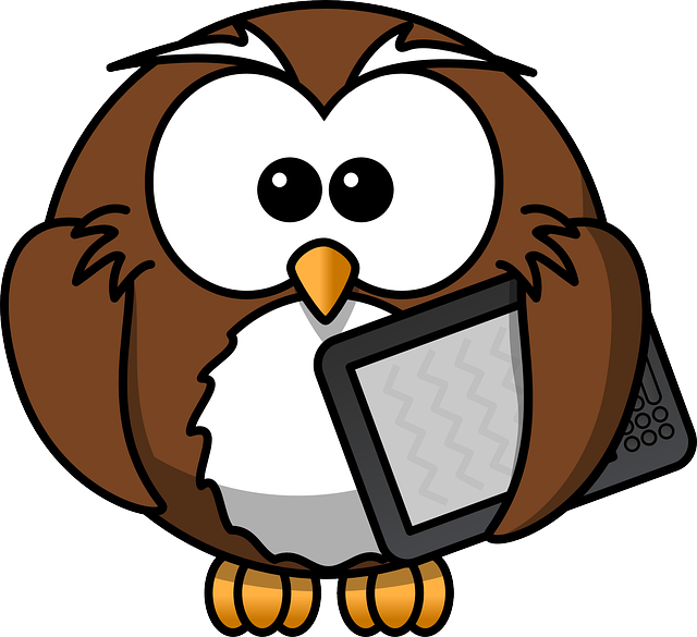 Animals-Birds-Owls